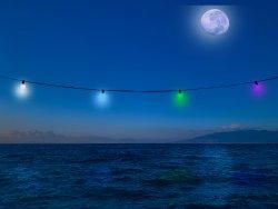 Lights_moon.jpg