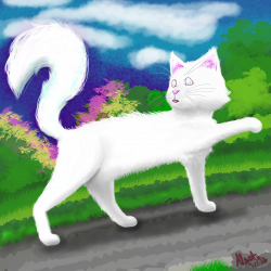 White Cat5.png