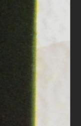 Screen Shot 2020-12-17 at 8.39.01 AM.png