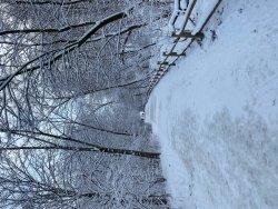 Snow Original File.jpg