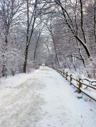 Snow Color Adjust.jpg