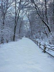 SnowOriginalFile_01.jpg