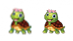 turtle combo resized.png
