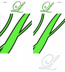 Bitmap vs Vector_1.jpg
