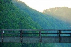 bridge-6388498.jpg