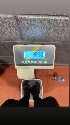In-progress-weight.jpg