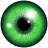 eye-162183_960_720.png