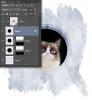 cat_MT_002.png