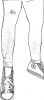 Leg Electrodes Front 2.png