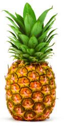 pineapple-05.jpg