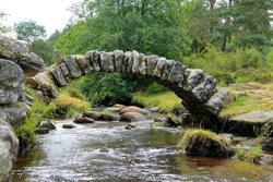 04. bridge.jpg
