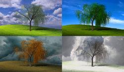 The Four Seasons.jpg