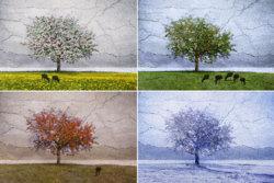 4 Seasons Painting.jpg