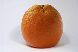 Fresh Orange.jpg