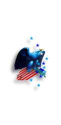 American_Eagle_Epic_Restore.2 - Copy - Copy (2) - Copy - Copy.png