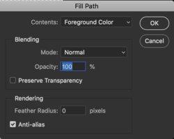 Fill-Path-options.jpg