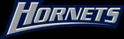 K-Hornet-Wordmark3.png
