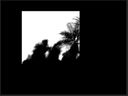 Screen Shot 2019-12-09 at 1.25.26 PM.png
