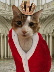 royal C A T.png