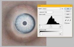 Eye Levels.jpg