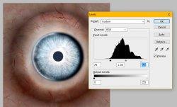 Eye Levels2.jpg