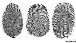 _63146121_fingerprint_types.jpg