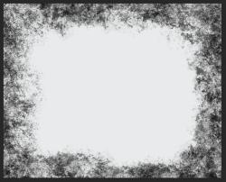 Screen Shot 2020-08-03 at 10.10.55 AM.png