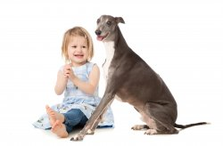 greyhound and girl edited.jpg