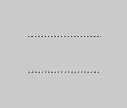Screen Shot 2020-09-08 at 8.06.21 PM.png