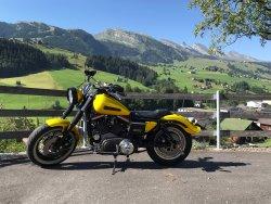 Harley1 copy.jpg