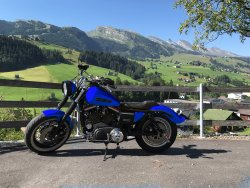 Harley blue.jpg